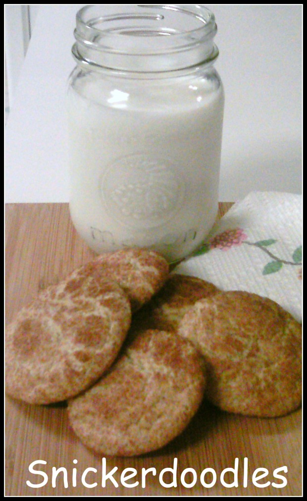 Snickerdoodle and milk 4