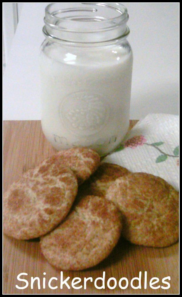 Snickerdoodle and milk 4