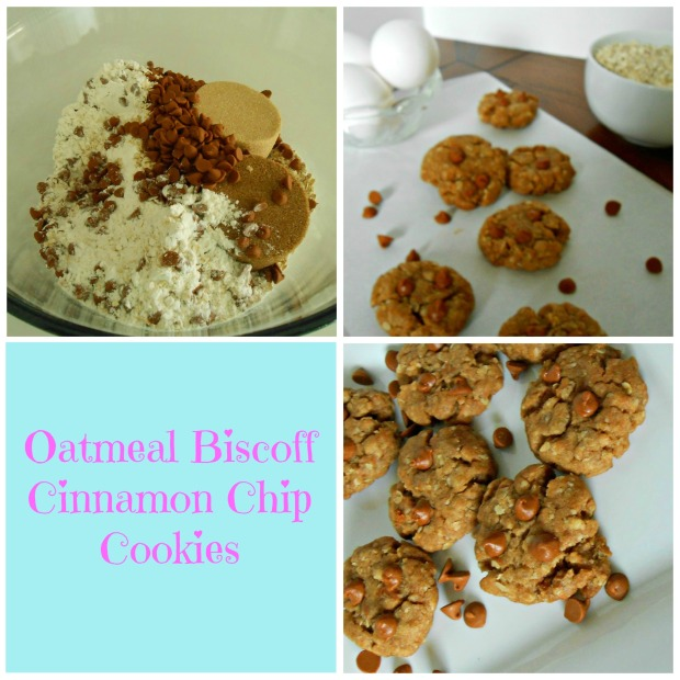 Oatmeal Biscoff Cinnamon Chip Cookie Collage