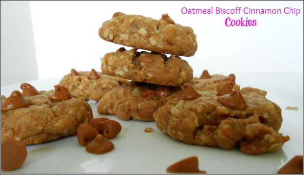 Oatmeal Biscoff Cinnamon Chip Cookies