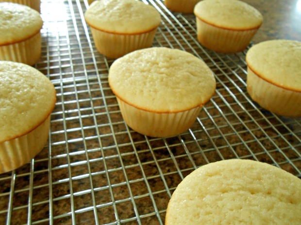 Easy Vanilla Cupcakes cooling
